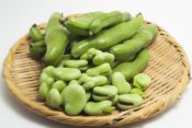 そら豆のゆでる時間や方法 皮ごとや豆だけ 冷凍保存法の仕方は!
