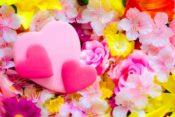 インドア花見名古屋の場所探しはスペースマーケットがいい!