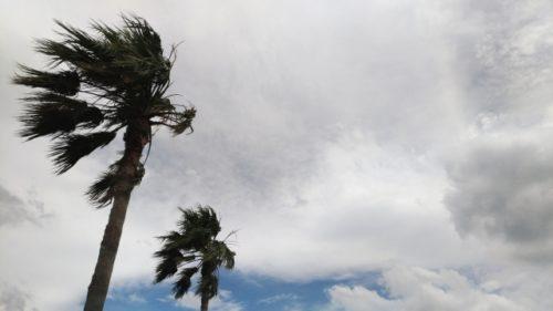 「台風2019」11号「バイルー」が発生!予想進路と上陸は?