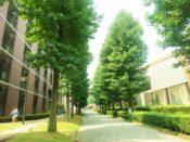 新潟大学の50代准教授が女子学生にアカハラ・セクハラで停職1カ月