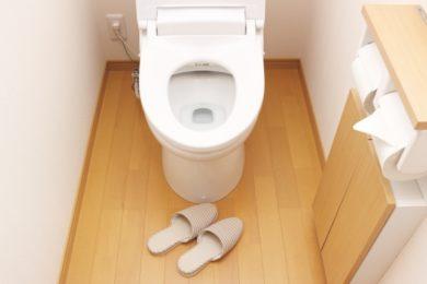 「トイレの逆流対策」には簡易水のうがとても有効・作り方などを紹介