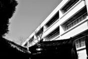 埼玉県北部の県立特別支援学校臨時教諭の男を淫行容疑逮捕!名前は?