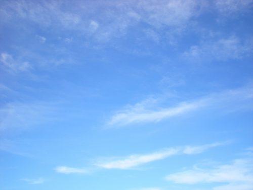 「かみひとえ」初参加でセンター奪取!弘中綾香アナのインスタ画像あり 身長や評判は?